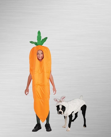 Carrot and Bunny Pet Costumes